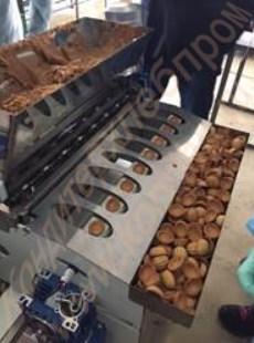 Машина 8-ми рядная  для полуавтоматического формирования орешков и  наполнения их начинкой - фото 6764
