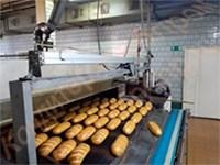 Установка автоматическая передвижная кареточного типа для опрыскивания хлеба водой на конвейерных тоннельных печах - фото 6991