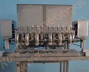 Машина шнеково-выпрессовывающая для производства густых кондитерских масс, сухофруктов, заварного и сырцового пряника  с начинкой или без