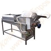 Установка мойки овощей, фруктов с производительностью до 1000 кг/час